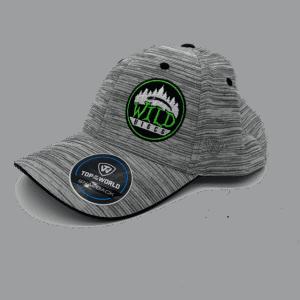 Wild Discs Round Logo Snapback Hat